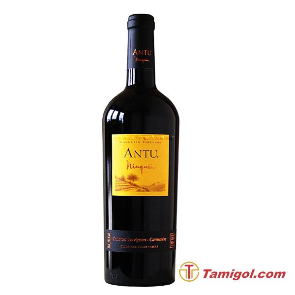 Antu-cabernet-sauvignon-1