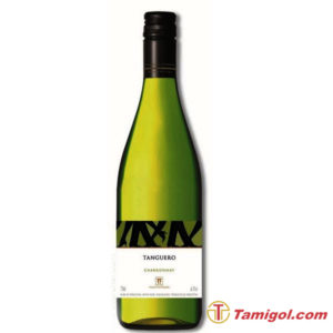 newvang-Finca-Flichman-Tanguero-Chardonnay-1