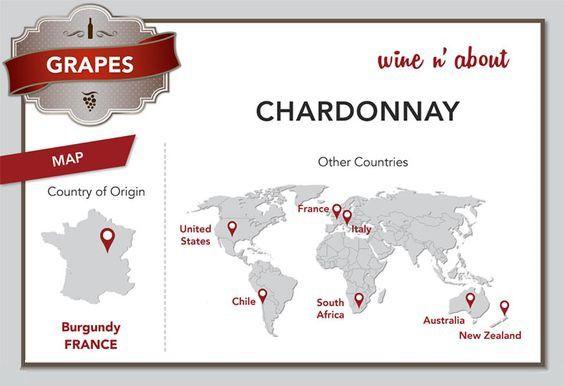 nho-chardonnay-2
